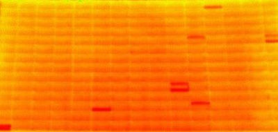 Scanner thermique